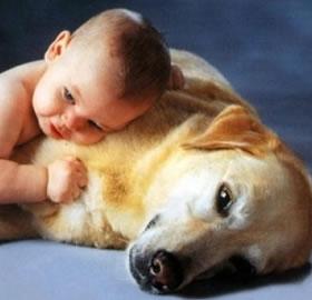 Hayvan-Sevgisi-Cocuklara-Empati-Kazandiriyor_599fc.jpg
