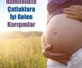 Hamilelikte-Catlaklara-iyi-Gelen-Karisimlar_e6d16.jpg
