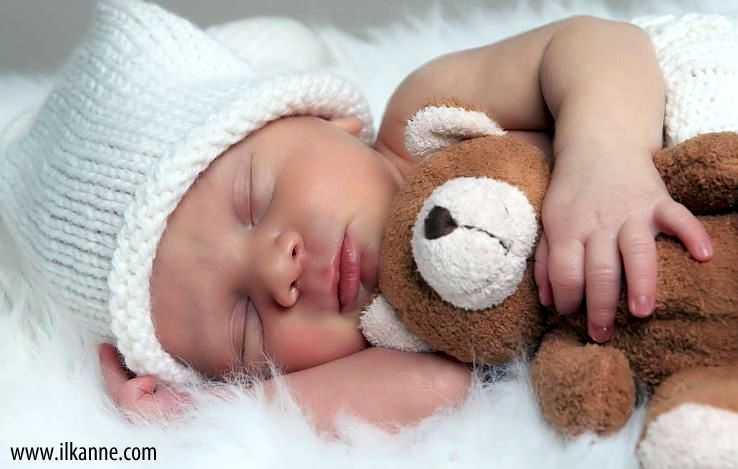 Ayıcık İle Uyuyan Sevimli Bebek