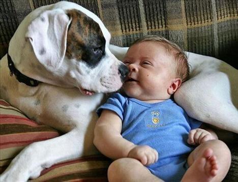 Bebek Köpeğin Yanında Çok Mutlu