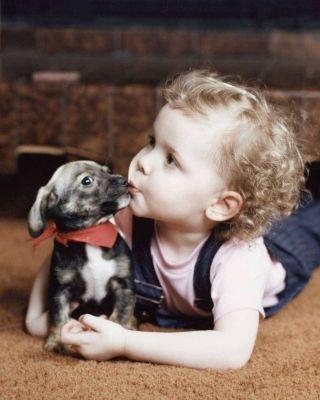 Küçük Köpek ve Minik Bebek