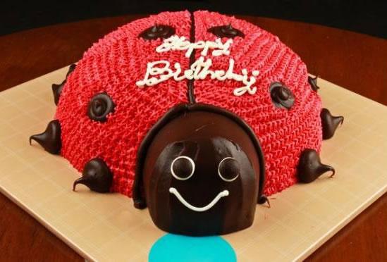 Uğur Böceği Figürlü Doğum Günü Pastası