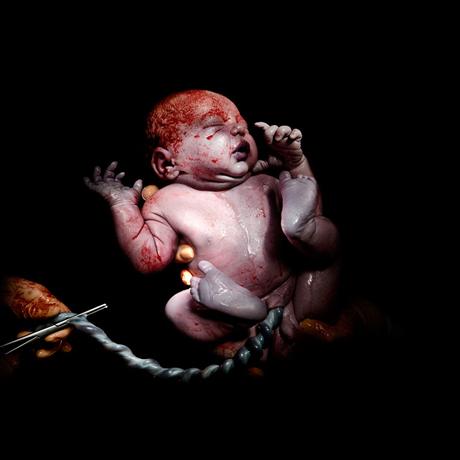 bebek-4
